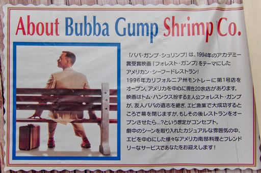 Gump02.jpg